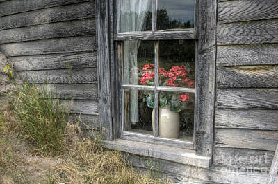Photograph - Faded In The Window by Michele Richter