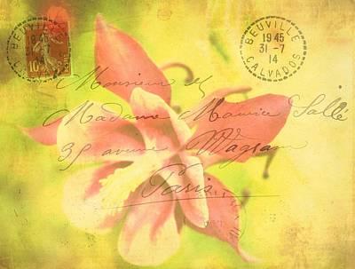 Purple Flowers Digital Art - Faded Mail by Cathie Tyler