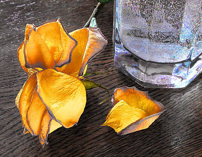 Photograph - Faded Rose by Vladimir Kholostykh