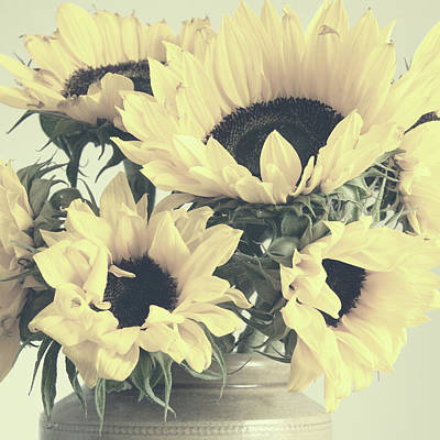 Photograph - Faded Sunflowers by Ethiriel Photography