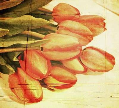 Faded Tulips Art Print by Cathie Tyler