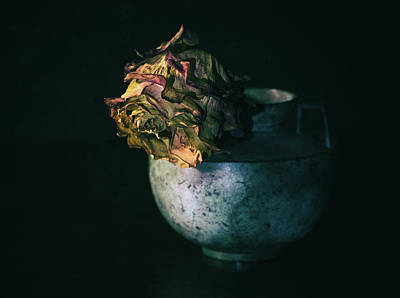 Photograph - Fading Beauty by Denise McKay