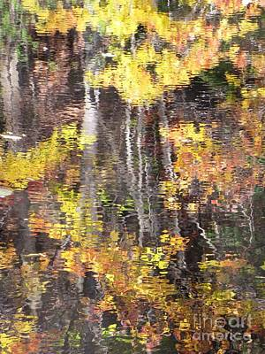 Photograph - Fading Fall Water by Melissa Stoudt