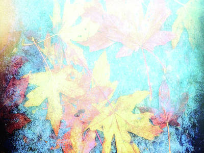 Digital Art - Fading Leaves... by Cathy Anderson