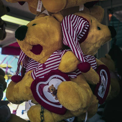 Photograph - Fair Bears by Samuel M Purvis III