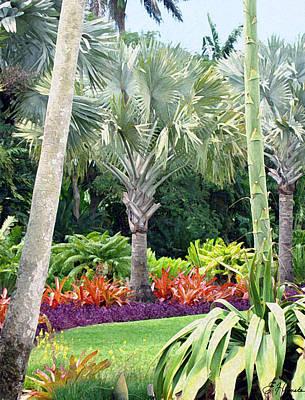 Painting - Fairchild Botanic Garden by Ellen Henneke