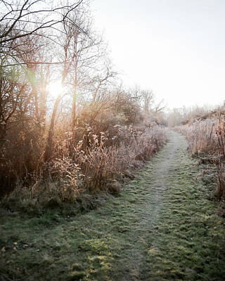 Photograph - Fairchild Hill On A Frosty Morning by Brooke T Ryan
