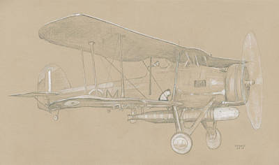 Swordfish Drawing - Fairey Swordfish by Dennis Larson