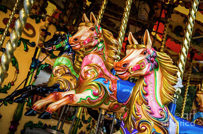 Photograph - Fairground Carousel Horses by Paul Warburton