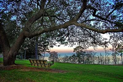 Fairhope Swing On The Bay Art Print