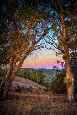San Leandro Photograph - Fairmont Ridge by Laura Macky