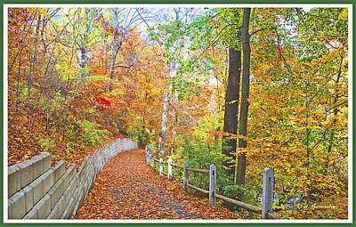 Fairmount Park Path In Autumn Philadelphia Pennsylvania Art Print