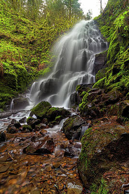Fairy Falls In Columbia Gorge Art Print by David Gn