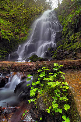 Fairy Falls In Spring Art Print by David Gn