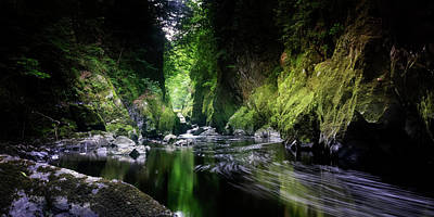 Photograph - Fairy Glen by Steve Caldwell