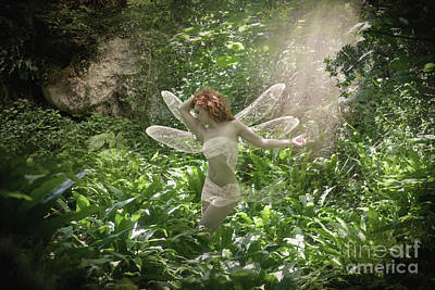 Photograph - Fairy In The Light by Clayton Bastiani