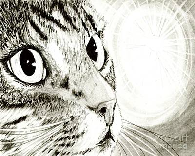 Art Print featuring the drawing Fairy Light Tabby Cat Drawing by Carrie Hawks