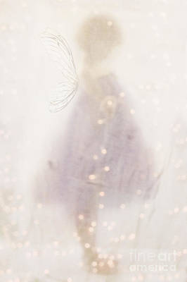 Fairy Lights Art Print by Stephanie Frey