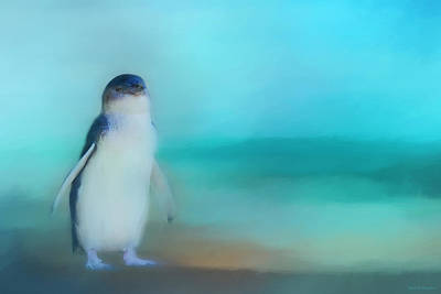 Photograph - Fairy Penguin Western Australia by Michelle Wrighton