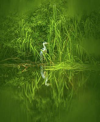 Photograph - Fairy Tale Heron #g5 by Leif Sohlman