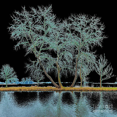 Digital Art - Fairy Tree-1 by Casper Cammeraat