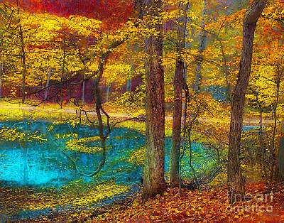 Photograph - Fairy Woods by Gina Signore