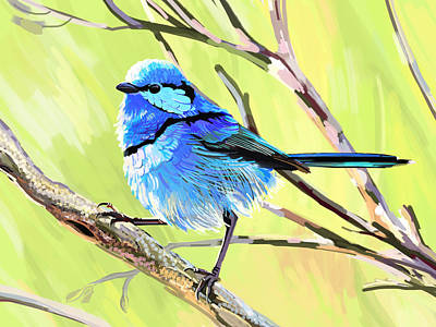 Fairy Wren II Art Print by Plum Ovelgonne