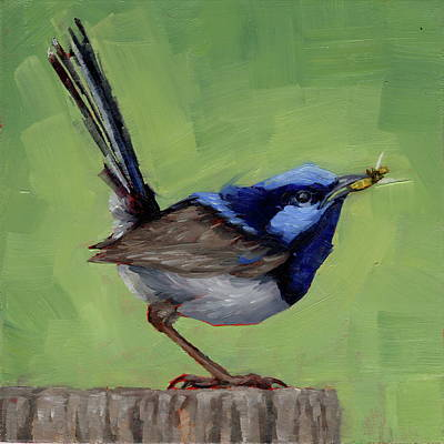 Painting - Fairy Wren With Lunch  by Margaret Stockdale