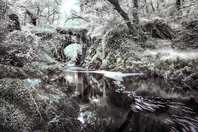 Faerie Photograph - Fairytale River by Mal Bray
