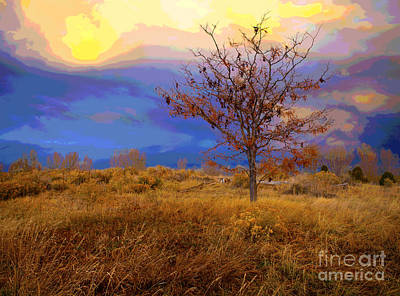 Photograph - Fairytale Tree by Barbara Schultheis
