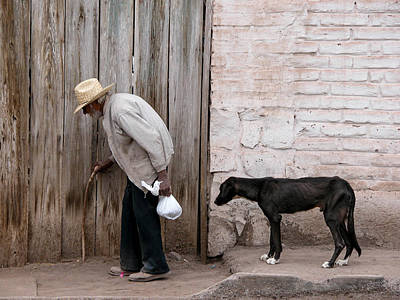Photograph - Faithful Friend, Mulege Mexico, 2004.  by John Jacquemain