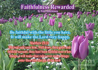 Photograph - Faithfulness Rewarded by Bible Verse Pictures