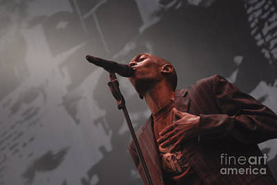 Photograph - Faithless by Jenny Potter