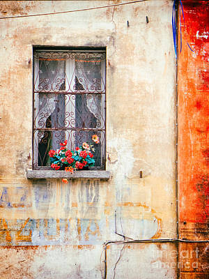 Photograph - Fake Flowers On Window by Silvia Ganora