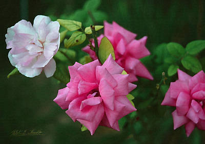 Digital Art - Fake Painting Of Roses by Robert Kernodle