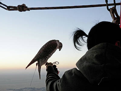 Photograph - Falcon And Trainer by Pema Hou