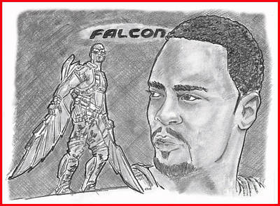 Drawing - Falcon by Chris DelVecchio