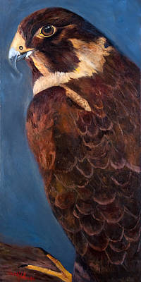 Condor Painting - Falcon by Jan Holman
