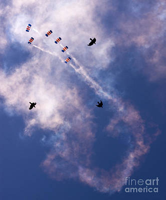 Raf Photograph - Falcons Versus Crows by Angel  Tarantella