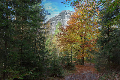 Photograph - Falkenstain, Saxonian Switzerland by Andreas Levi