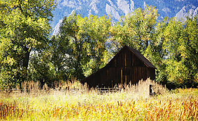 Old House Photograph - Old Barn Nestled by Marilyn Hunt