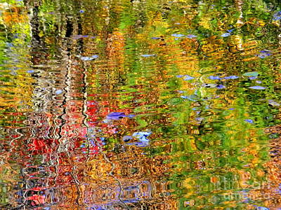 Photograph - Fall 2016 by Elfriede Fulda