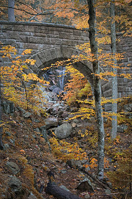 Photograph - Fall A Bridge In Acadia Np Maine Img 6405 by Greg Kluempers