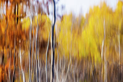 Fall Abstract Art Print by Mircea Costina Photography