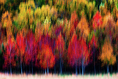 Photograph - Fall Abstract by Richard Macquade