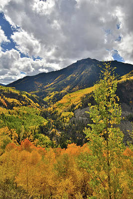 Photograph - Fall Afternoon In Colorado by Ray Mathis
