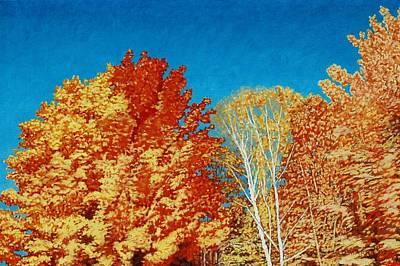 Fall Art Print by Allan OMarra