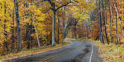 Fall Road Photograph - Fall Along Bohemian Road by Twenty Two North Photography