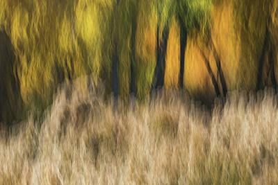 Photograph - Fall Along The Colorado River by Deborah Hughes