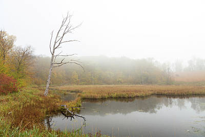 Photograph - Fall And Fog by Penny Meyers